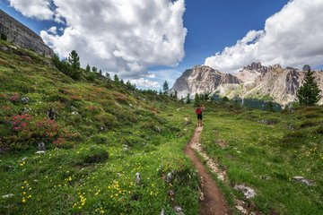 Wandern im Ahrntal nahe Hotel Alpenfrieden ist ein Genuss. ©pexels.com